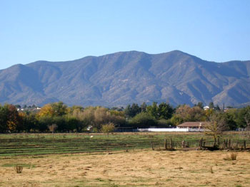 Cottonwood Real estate properties - homes and land